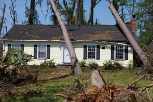 Roof damaged by falling trees. Homeowner will need to make a roof-damage insurance claim